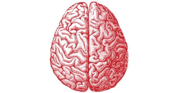 Как перезапусить мозг и начать с чистого листа