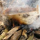 6 ценных способов использования древесной коры