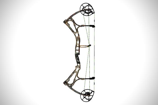 Bear-Archery-Motive-6