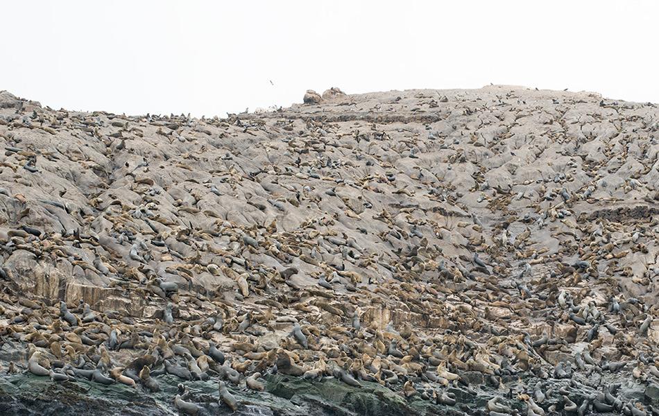 Регион Каллао, Перу. Широта: 12° 4` 43.0915