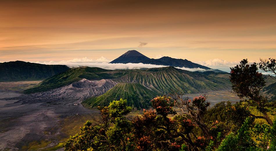 Более 250 000 лет назад здесь был огромный стратовулкан. Если бы он существовал до сих пор, то при своих 4500 метрах был бы высочайшей горой Явы. Но вершина того доисторического вулкана разрушилась, что и сформировало песчаную кальдеру (круглое углубление в конце жерла вулкана), в которой после появился Бромо и еще четыре вулкана.