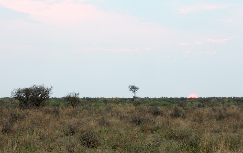 Окрестности города Маун, Ботсвана. Широта: 19° 27` 46.2146