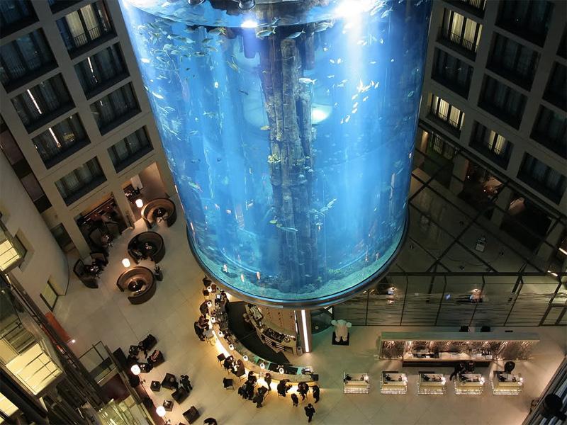 Во внутреннюю часть самого большого в мире цилиндрического аквариума с соленой водой, расположенного в холле отеля «Radisson Blu» в Берлине, инженеры спрятали прозрачный лифт. Во время подъема на нем посетителям становится доступна 360-градусная панорама подводного царства, представленного 1500 рыбами 97 видов.