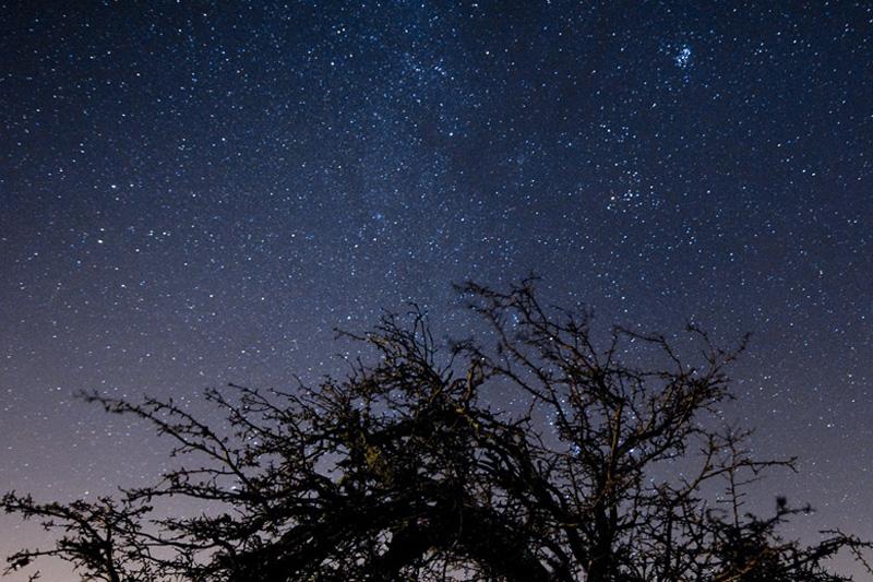 В Эксмурском национальном парке в Британии в ясную погоду в небе можно разглядеть Полярную звезду, созвездие Кассиопеи и Большую Медведицу. Парк входит в число «заповедников темного неба».