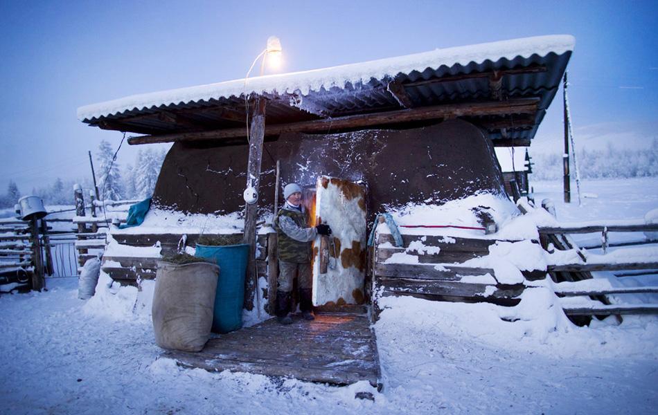 Фермер Николай Петрович закрывает дверь в отапливаемом сарае после того, как загнал туда своих коров на ночь.