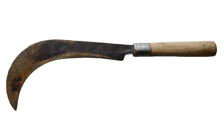 Кирти Кали Ванесса начала коллекционировать мачете в 2006 году. Этот мачете, которым пользуются работники парка в Читване, на непальском звучит как «крупа».