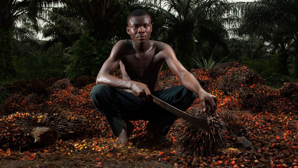 Мачете №18: Калабар, Нигерия Хинша позирует среди пальм. Вырубка лесов по всему миру, происходящая из-за подъема производства пальмового масла, наносит огромный ущерб экологии, но все-таки дает местным жителям рабочие места и источник дохода.
