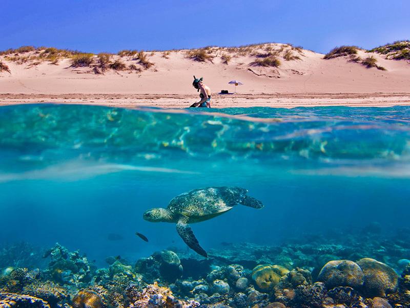 Девушка готовится к подводному плаванию на пляже Ямайки.