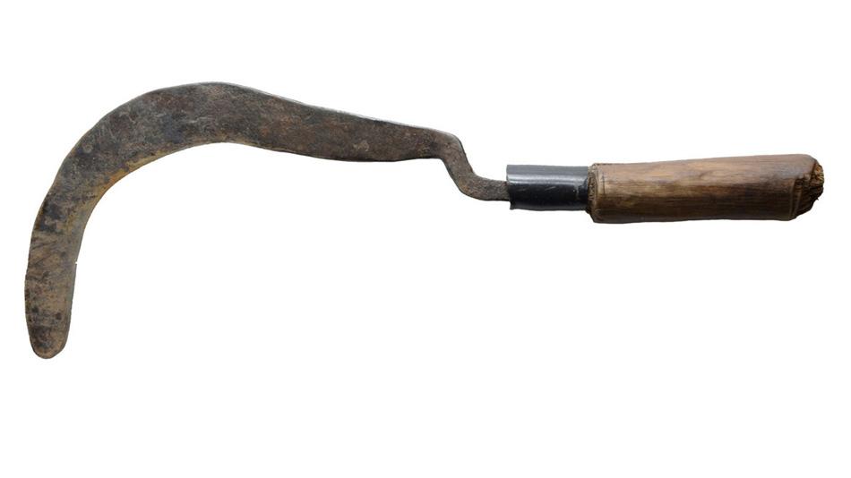 Долгожитель Серп — лишь один из множества вариантов ножа в стиле мачете.