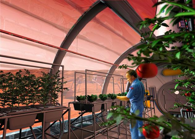 Food-on-Mars