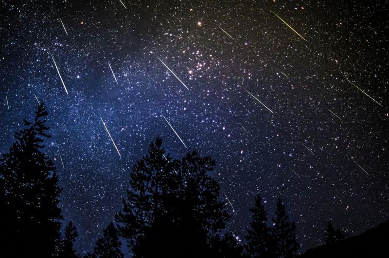 Выпущенные кометой Свифта-Туттля пылевые частицы сгорают в земной атмосфере, выпадая в виде звездного дождя. В августе количество метеоров достигает максимума: в час выпадает до 60 метеоров, создавая в небе невероятное шоу.