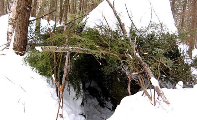 Обустройством ночлега желательно заниматься засветло. Оптимальный вариант — найти поваленное дерево, при падении которого между стволом и землей осталось пространство, и соорудить навес. На ствол необходимо уложить длинные ветки, а сверху настелить лапник. Также из хвойных веток выстелите себе лежанку. Контакт со снегом должен быть минимальным: чем толще будет лежанка, тем выше будут ваши шансы на выживание.