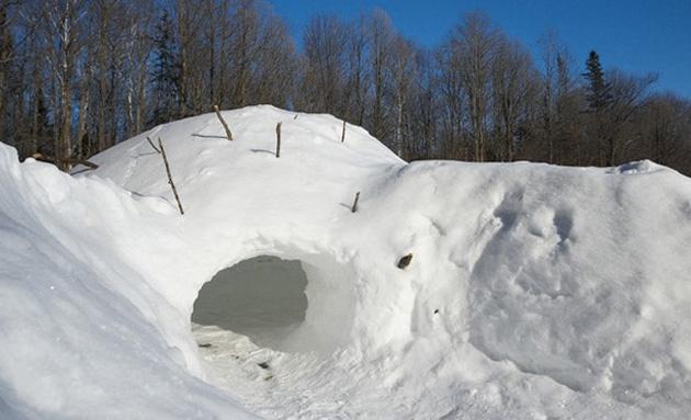 Если в округе нет подходящего дерева, под укрытие можно приспособить молодые деревья или кустарники. Ветки следует переплести так, чтобы получился каркас. На него укладываем лапник и присыпаем сверху снегом.Альтернативой укрытию из веток может стать снежное убежище. В зависимости от условий местности и состояния снега можно выкопать в сугробе небольшую пещеру или же срезать верхний слой уплотненного снега и построить подобие иглу. Ознакомиться с разновидностями и техникой строительства снежных убежищ можноздесь.