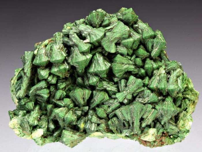 Торбернит Минерал с красивой зеленой окраской, которым многие хотели бы украсить свои полки, содержит около 50% урана, поэтому служит как индикатор его залежей. Его не только не стоит приносить в дом, но и брать в руки. Минерал выделяет опасный для здоровья радон, который может вызвать рак легких.