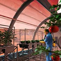 Прошлое, настоящее и будущее еды космонавтов: от пюре из тюбиков до борща на Марсе
