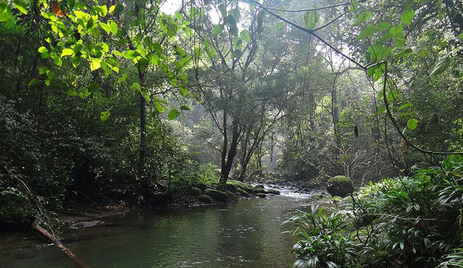 Транспанамская тропа, Панама Дистанция: 800 километров Каждый, кто хоть раз путешествовал по тропикам, подтвердит очень суровые местные условия. Густые и влажные джунгли, полные москитов и других кровососущих тварей, только и ждут, пока вы начнете это 800-километровое путешествие. Но по пути вас ожидает много интересного. От границы Колумбии и Коста-Рики вы вскоре попадете на территории местных племен вроде Куна и Эмбера. Также у вас будет шанс прокатиться на каноэ по водам тропических лесов и пройти по стопам конкистадоров, которые были здесь 600 лет назад. На всю Транспанамскую тропу у вас уйдет больше трех месяцев.