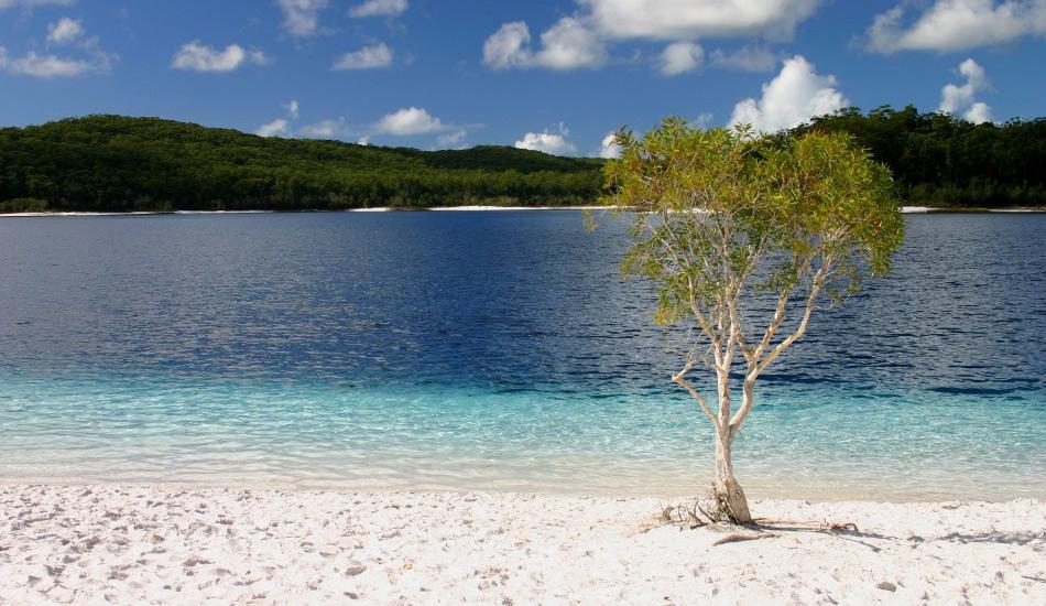 Озеро Маккензи, Австралия Более идеального водоема, чем озеро Маккензи, вы едва ли найдете на Земле. Белоснежный песок вдоль его берегов на 100% состоит из кремния, который используется во многих продуктах парфюмерии и положительно сказывается на состоянии волос, кожи и ногтей. Единственным источником идеально чистой и прозрачной воды в озере являются дожди, чья кислотность несовместима с какими-либо живыми организмами, кроме вашего расслабляющегося тела.