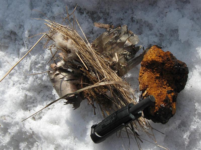 Трут В условиях влажной погоды высохшие иголки хвойных пород — один из лучших материалов, воспламеняющихся от одной искры. Причем, они могут отлично воспламеняться даже, когда они мокрые. Поэтому если иголки на вашей новогодней елке достаточно высохли и осыпаются, то их спокойно можно использовать в качестве трута.