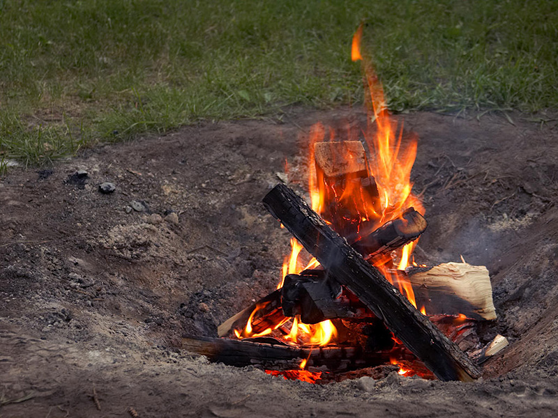 Дрова Само собой, если хвойные иголки идеально подходят для разжигания костра, то ствол и ветки можно использовать для его поддержания. Иголки можно просто оставить на поверхности дров для лучшего разгорания. Иголки можно также вставить в ветку, чтобы затем поджечь ей костер.