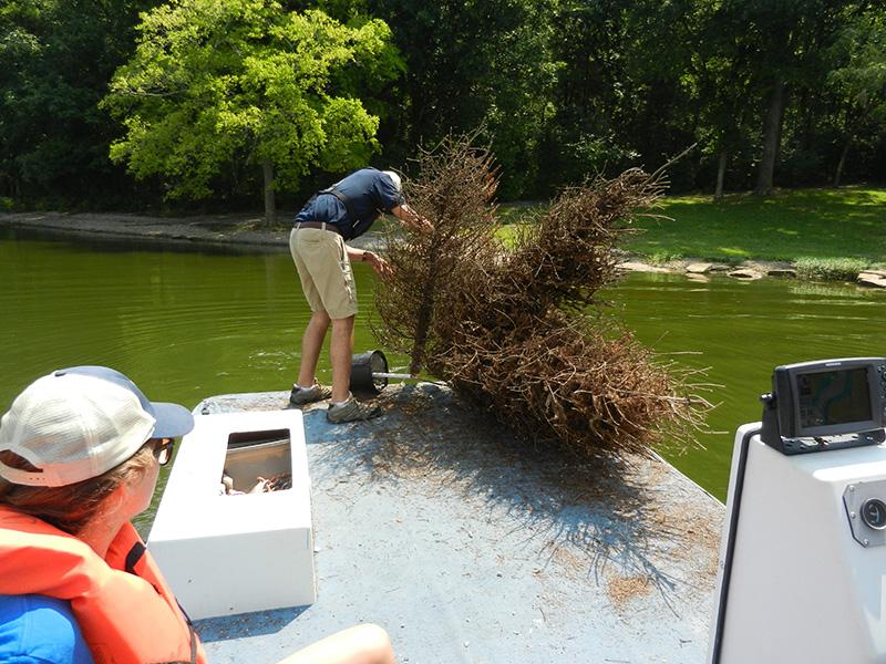 Приспособление для рыбалки Привяжите кусок дерева к чему-нибудь массивному и опустите его под воду. Подтопленное хвойное дерево обычно привлекает рыбу в открытой воде. Во время спортивной рыбалки многие виды рыб клюют на подобную конструкцию.