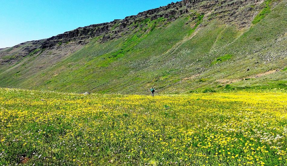 Тропа пустынь Орегона, США Дистанция: 1287 километров Орегонская пустыня — захватывающая и очень суровая местность, которая проверит вас на прочность. Маршрут представляет из себя смесь коротких троп, исторических дорог колонистов и путей сквозь дикую местность. Тропа пустынь — действительно серьезный вызов, который не стоит принимать, будучи неподготовленным. У вас за плечами должен иметься опыт и большие запасы воды. Тем не менее удивительные по красоте пейзажи делают эту тропу очень привлекательной.