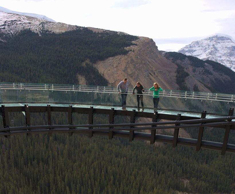 Skywalk 2, вид на лесные массивы региона.
