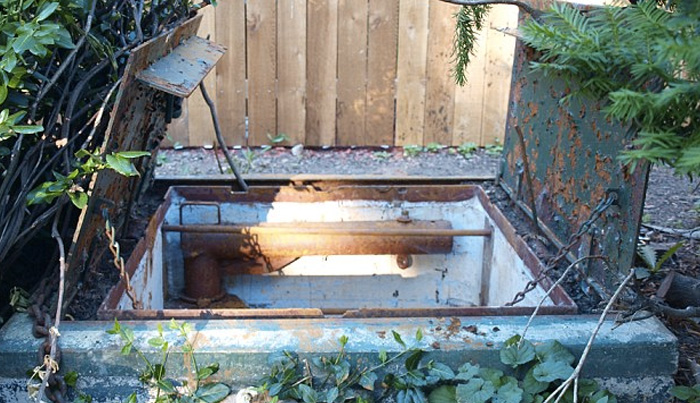 10 необычных вещей, найденных на заднем дворе