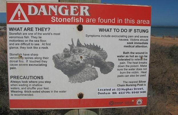 Стандартное предупреждение, размещенное на вполне обычном городском пляже. Специально для тех купальщиков без страха и упрека, кому не только море по колено, но и собственная жизнь.