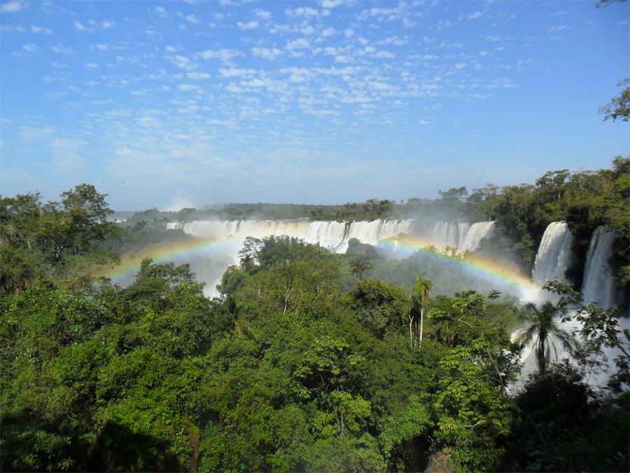 Атлантический лес Южная Америка Атлантический лес тянется вдоль атлантического побережья Бразилии, к частям Парагвая, Аргентины и Уругвая. Эти влажные тропические леса содержат 20 000 видов растений и 24 видов позвоночных, находящихся на грани исчезновения. Прогнозы ученых оставляют этому лесному массиву не больше 10 лет существования.