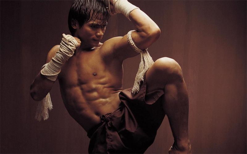 Практика Неплохо было бы взять несколько уроков самообороны. Рукопашный бой, кун-фу, бокс, тайский бокс, джиу джитсу – боевым искусствам нет числа, было бы желание заниматься. Отбиваться от банд постапокалиптических станет легче, возможно вы сами даже сможете отнять добычу у них. А если серьезно, регулярные тренировки дадут вам уверенность в себе и силы справиться с любой неприятностью.