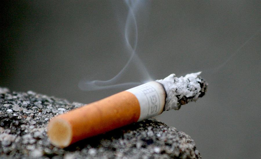Трут Самый очевидный способ. Бумага подойдет для розжига, измельченный табак неплохо горит. Также, обычная сигарета долго тлеет из-за добавленных туда химикатов. То есть, вы сможете без особых проблем переносить огонь с одного места на другое.