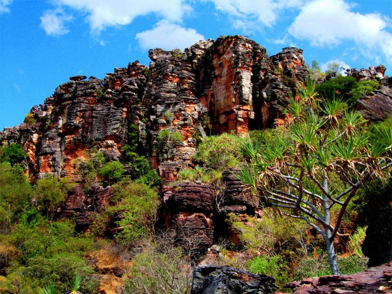 Какаду, Австралия Площадь: 19 804 км² Название парка произошло от племени «Какаду», которое проживало на этой территории. Со всех сторон парк окружен уступами, благодаря чему здесь образовалась уникальная биологическая резервация. В парке зарегистрировано более 1700 видов растений, а его животный мир представлен 280 видами птиц, 117 видами рептилий, 77 видами рыб, 1000 видами насекомых и 60 видами млекопитающих. Парк также известен разнообразием природных зон: от тенистых болот и солнечных равнин до непроходимых лесов.