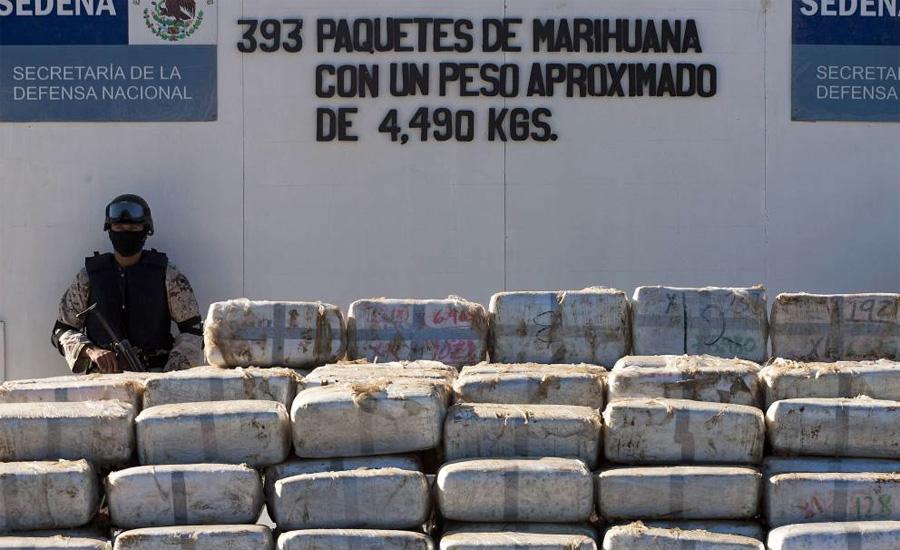 Тихуана Год спецоперации: 2009Суммарный вес конфиската:30 тоннСостав:марихуана Подземные туннели, превращенные умельцами в настоящие оранжереи, обнаружили в своем городе мексиканские наркополицейские. В результате операции было изъято более 30 тонн уже подготовленной к употреблению марихуаны на общую сумму в 20 миллионов долларов.