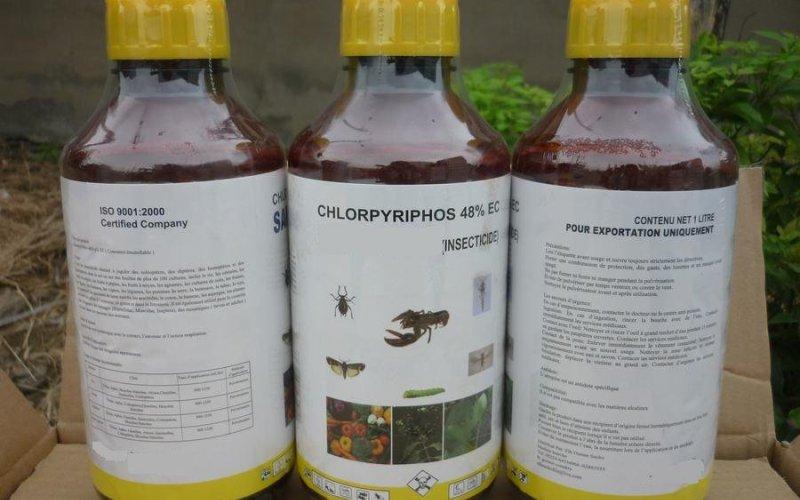 Хлорпирифос Распространенный в прошлом химикат, входящий в группу фосфорорганических пестицидов, используемый для уничтожения вредителей. На сегодняшний момент хлорпирифос классифицируется как высокотоксичное соединение, опасное для птиц и пресноводных рыб, и умеренно токсичное для млекопитающих. Несмотря на это, оно по-прежнему широко используется в выращивании непродовольственных культур и для обработки изделий из древесины.