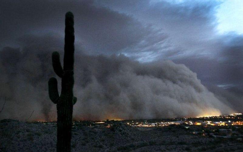 В североамериканских прериях В центральных штатах Северной Америки, в области Великих равнин в 40-х годах прошлого века разразиласьцелая серия бурь. Стихийное бедствие, окрещенное «Пылевым котлом», бушевало два дня. За это время огромные черные облака пыли достигли Чикаго, засыпав его тоннами песка, земли и мусора.
