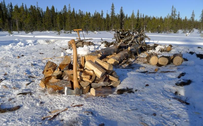 Навык дровосека Зимой и ранней весной для нормального функционирования вашего лагеря вам понадобится очень много дров. В частности, для кипячения воды и приготовления пищи. Для того, чтобы получать достаточное количество топлива, вам придется подолгу колоть себе дрова, и чем быстрее вы овладеете навыком колки дров, тем легче вам придется в будущем. В следующий раз, когда соберетесь в поход, берите с собой топор – чтобы упражняться.