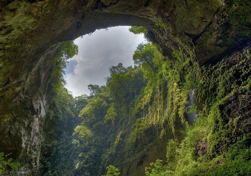 Местами потолок пещеры обрушен. Через эти отверстия в пещеру проникает свет, благодаря чему в ней разрослись настоящие джунгли, в которых обитают обезьяны, птицы и насекомые.
