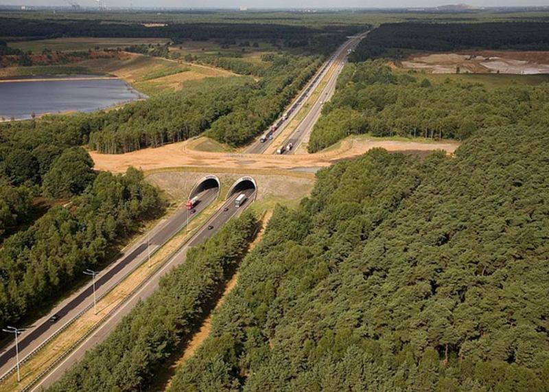 Автострада E314, Бельгия
