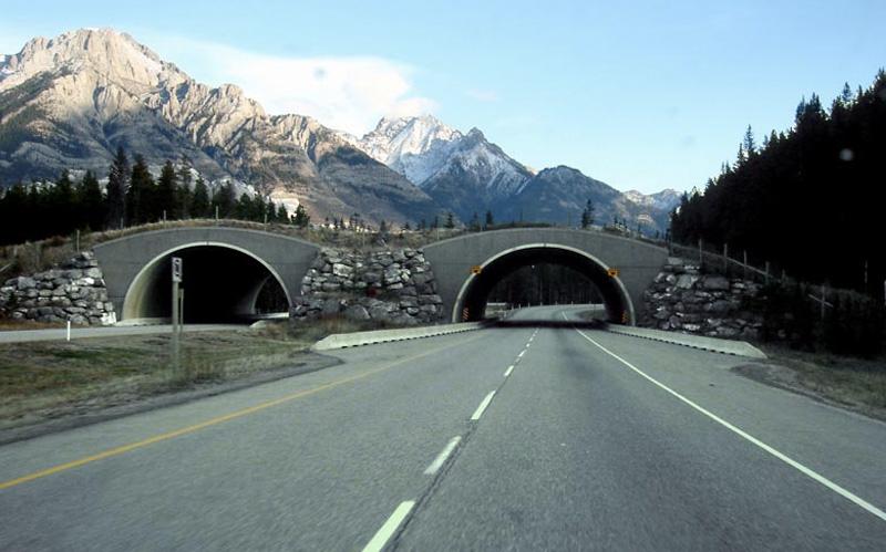 Национальный парк Банф, Альберта, Канада
