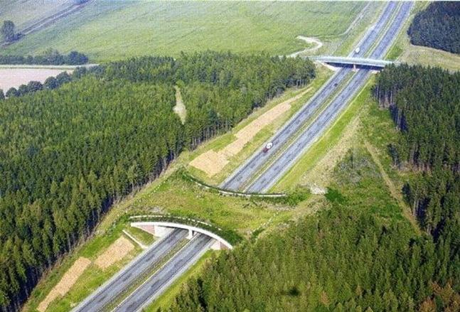 АвтострадаA20, Германия