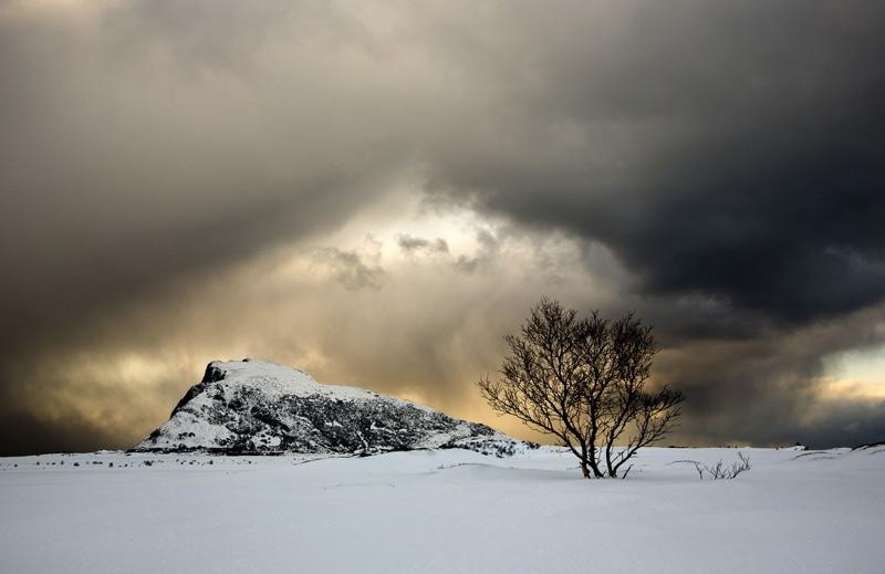 Клэр Картер. Вторая премия номинации «Свет на Земле». Гимсёй, Норвегия.