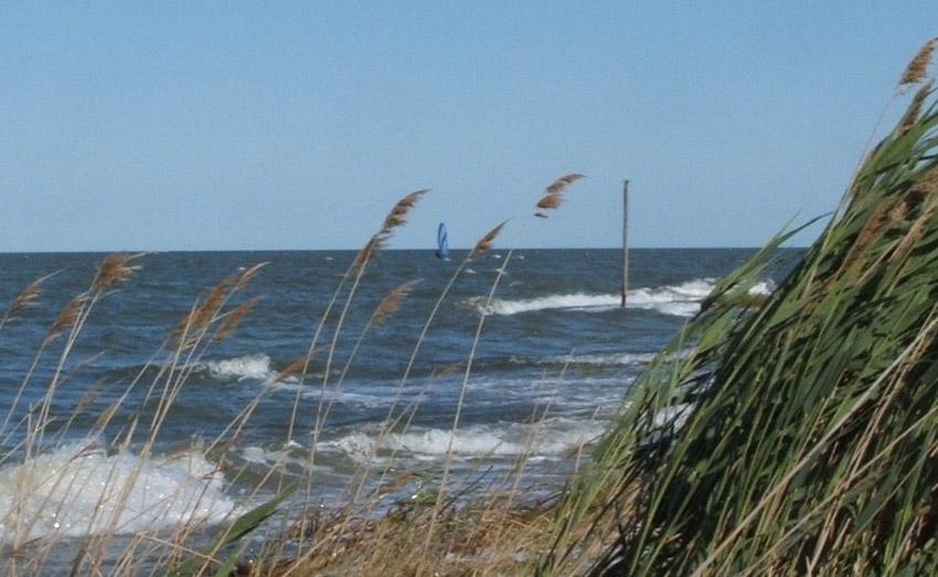 Легкий, слабый, умеренный, свежий Скорость ветра: 12-38 км/чОт 2 до 5 баллов Ветер от 2-х баллов классифицируется как легкий. Он может колыхать листья деревьев, его дуновение ощущается на коже. При 3-х баллах, слабом ветре, начинают качаться ветки, флаги, на море появляются короткие, но выраженные волны. Умеренный ветер, который оценивается в 4-е балла, поднимает пыль, размывает очертания дыма и создает на воде белые барашки. Свежему ветру в 5 баллов по силам раскачать тонкие стволы, вызвать свист в ушах и сформировать волны высотой до 2-х метров.