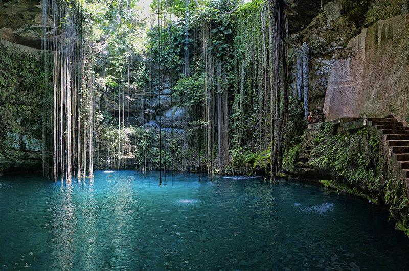 Искупаться в одной из сенот — естественном природном бассейне — на полуострове Юкатан.