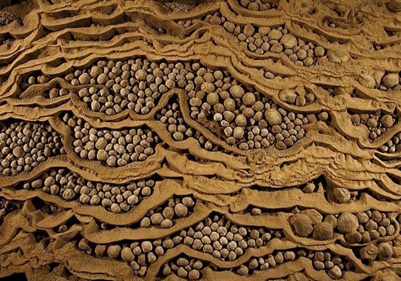 Пещера поражает не только своими размерами, но и представленными в ней образованиями, такими как древние окаменелости, пещерные жемчужины и сталактиты.
