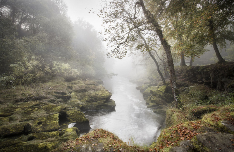 Шон Волби. Победитель в категории «У самого края воды». Дымка над рекой Уорф в графстве Йоркшир.