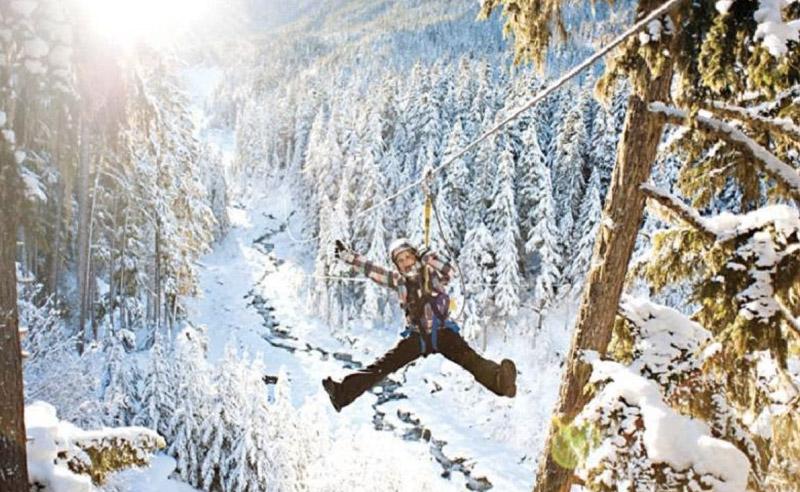 Уистлер, Британская Колумбия Зиплайн включает 5 маршрутов, расположенных над долиной, между горами Уистлер и Блэккомб. Самый головокружительный начинается на горе Уистлер на высоте 1000 метров.