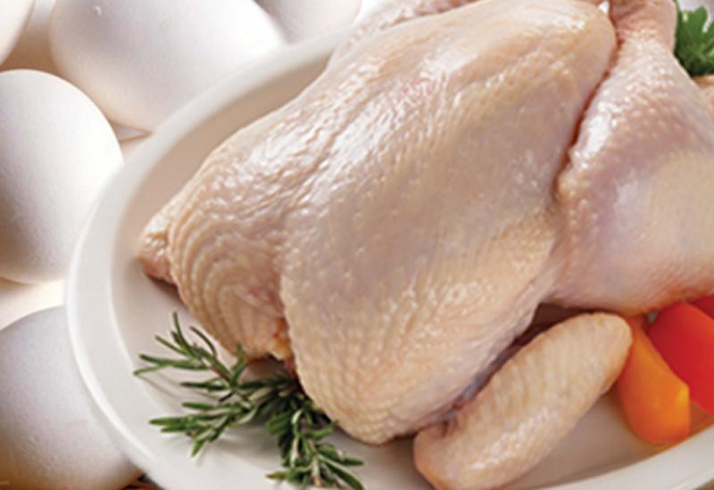 Цыпленок Альфа и омега здорового питания интересующегося своей физической формой гражданина любого возраста. Есть можно практически каждую часть. В темном мясе на бедрах больше железа и цинка, но меньше белка и больше насыщенных жиров. Грудка — кладезь белка с минимальным количеством калорий. Стоит ли упоминать о том, что птицу следует только варить?