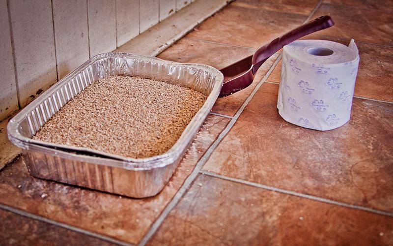 Кошачий лоток без запаха Прежде чем засыпать в лоток наполнитель, сперва покройте его дно тонким слоем соды. Далее следует сам наполнитель, и завершающим слоем вновь служит сода.