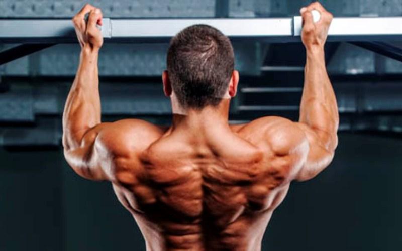 Подтягивания на перекладине Особый тип подтягиваний, который позволит вам быстро накачать мышцы спины. Здесь используется так называемый «беспальцевый» хват, при котором все ваши пальцы должны быть расположены поверх перекладины. Не останавливайтесь на полпути, широчайшие мышцы спины, пока вы не поднимите подбородок выше перекладины, просто не успеют сократиться.