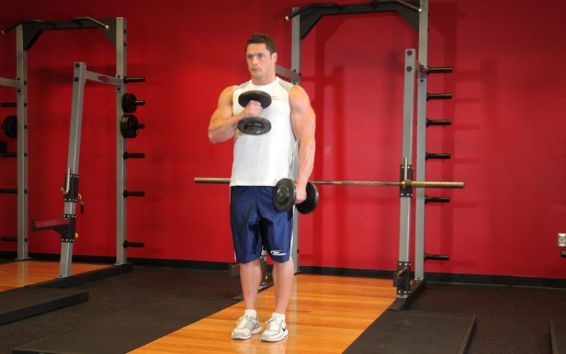 Молот Это упражнение можно выполнять как стоя, так и сидя, опираясь спиной на скамью с прямой спинкой. На вдохе начните сгибать руку, поднимая гантель к плечу. Не помогайте себе корпусом и держите локти как можно ближе к туловищу. На выдохе медленно и плавно опустите руку. Это очень хорошее упражнение на мышцы бицепса и предплечий.